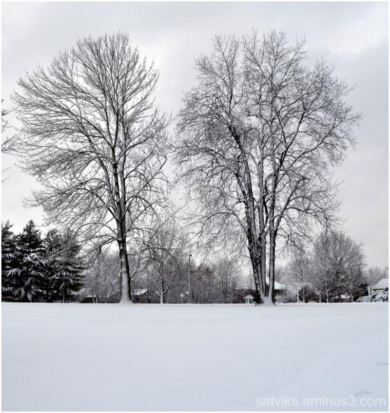 02. Feb. 2011