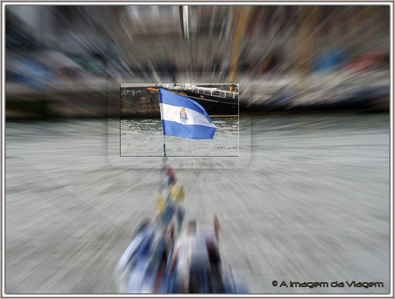 Bandeira F.C.Porto