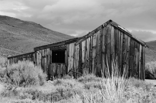 Bodie Building