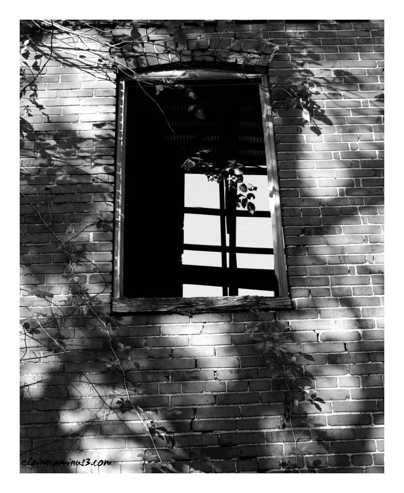 old building, window