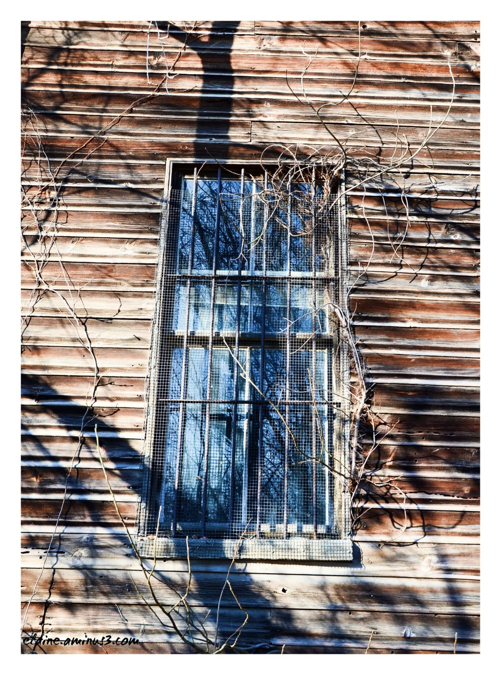 window old house