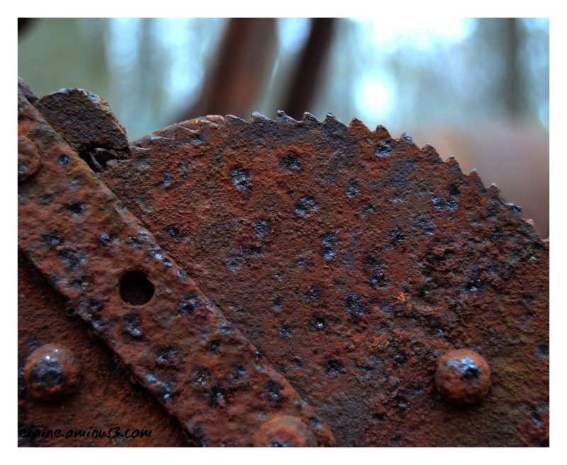 rusted blade