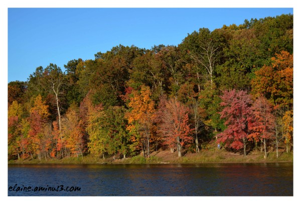Lake Needwood 2