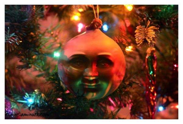 man in the Christmas tree