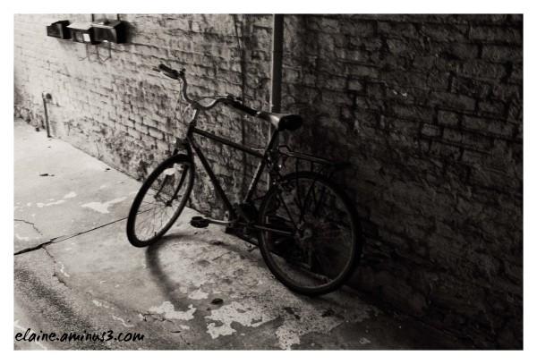Back Alley Bike