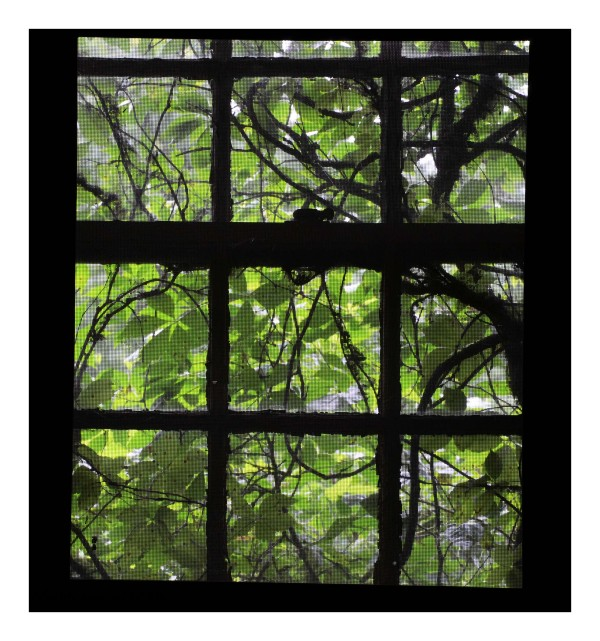 window without a view