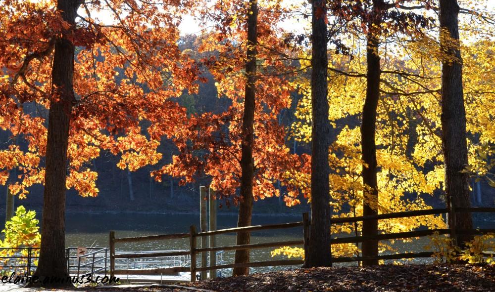 autumn lake needwood