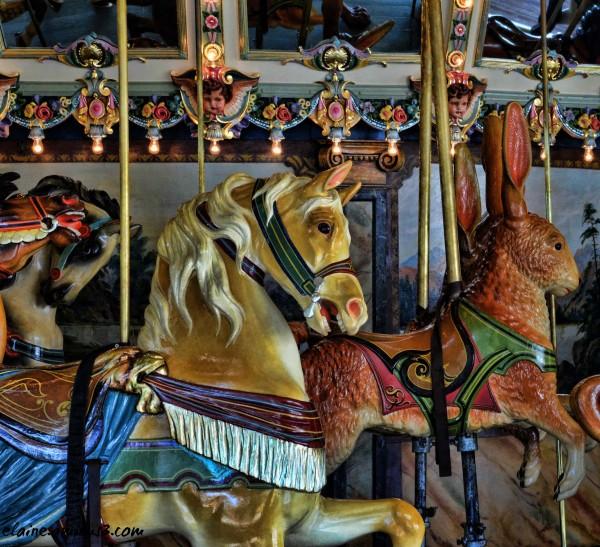 Glen Echo Park carousel