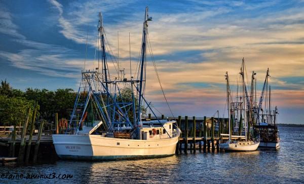 Shrimp Boats at Shem Creek