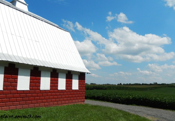 barn and corn field