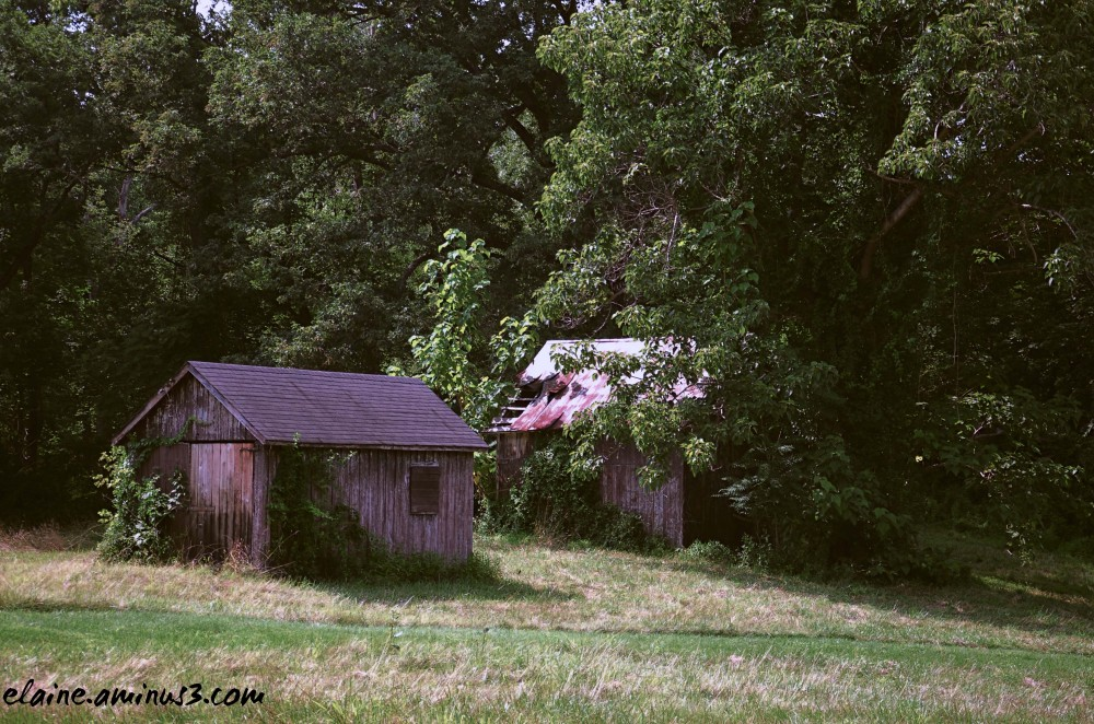 barn and shed