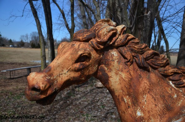 Rusted Mare