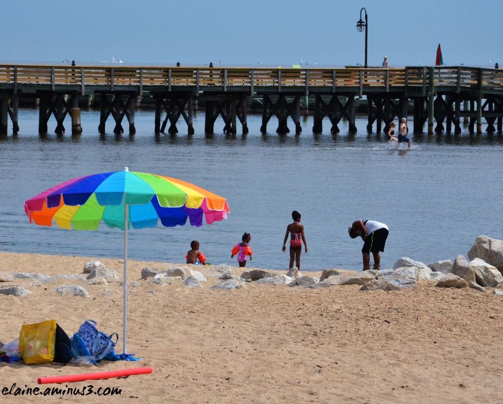 umbrella and beach