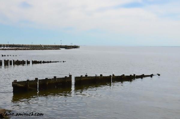 Chesapeake Bay 2