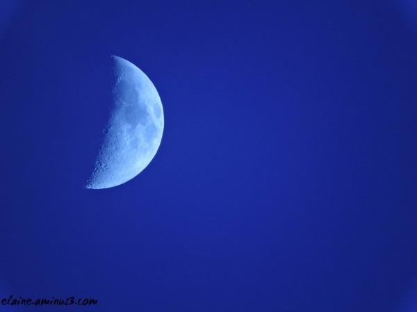 A Boardwalk Moon
