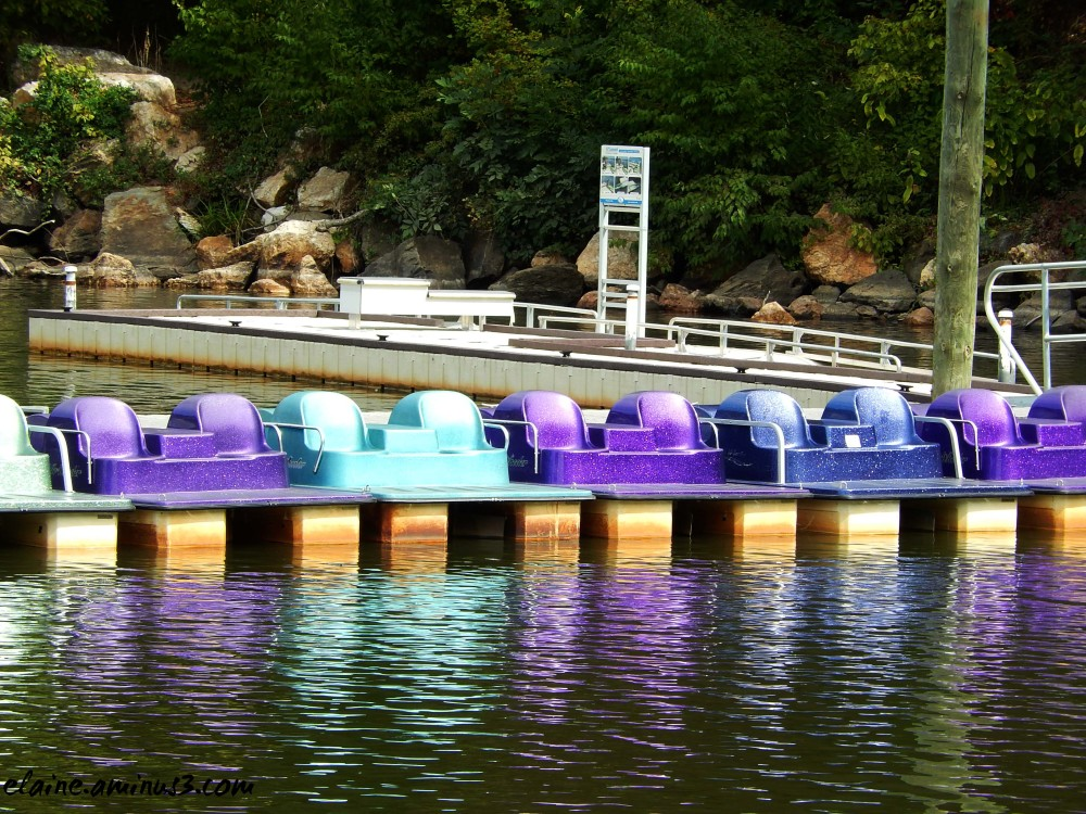 paddle boat reflection