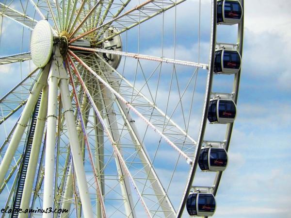 capital wheel