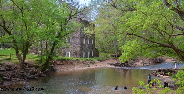 Black Rock Mill