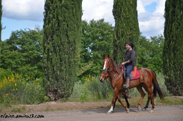 Horseman at Caparzo Winery