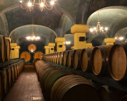 Caparzo wine cellar