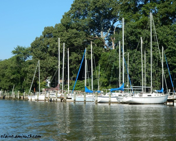 Sailing on the Magothy River