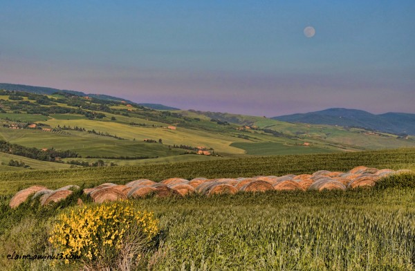 full moon over hay bales