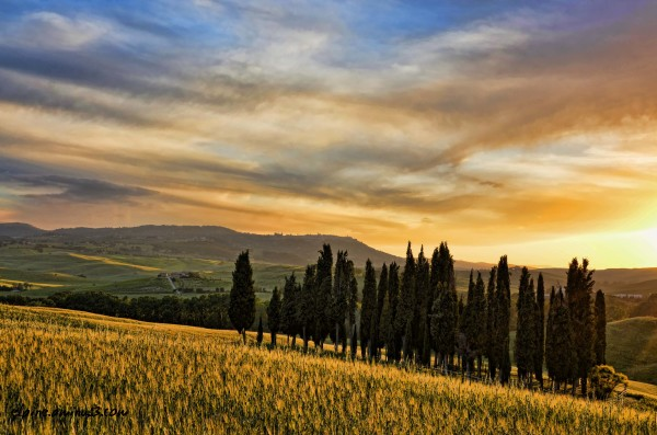sunset in Torrenieri Tuscany