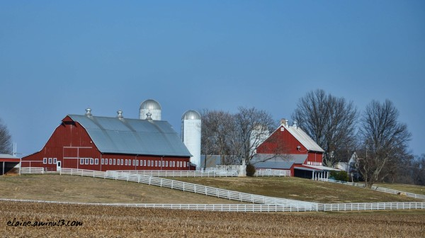 farm and barn