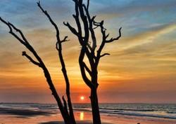 sunrise Edisto Island