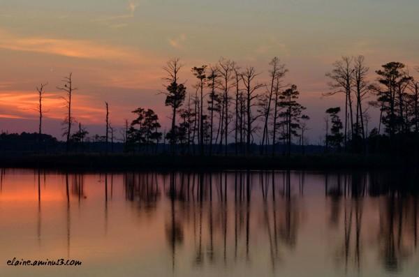 Sunset at Blackwater