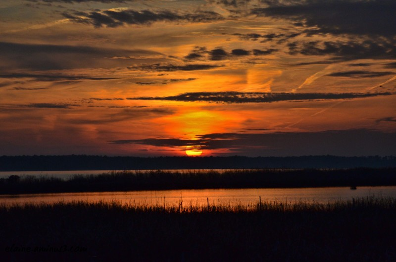 sunset Blackwater Wildlife Refuge