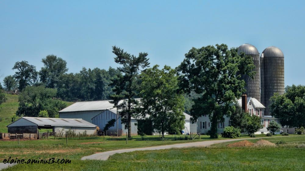 Rocky Point Farm