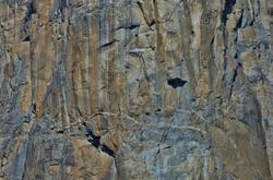 El Capitan climbers