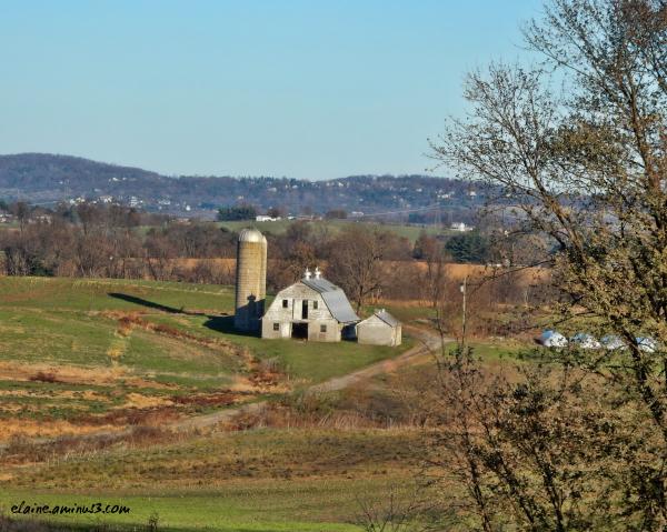 Frederick County