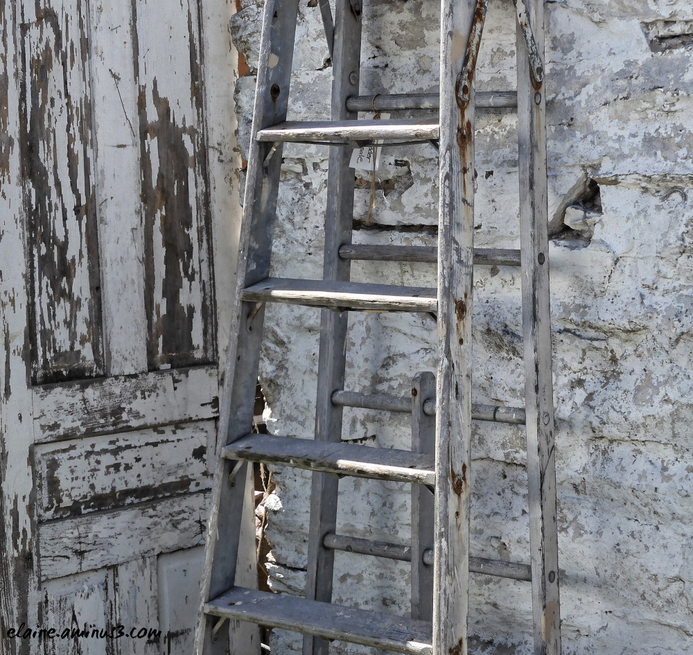 door and ladder