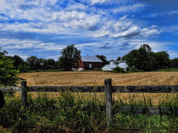 Maryland farm