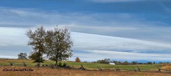 Farm Sharpsburg, MD