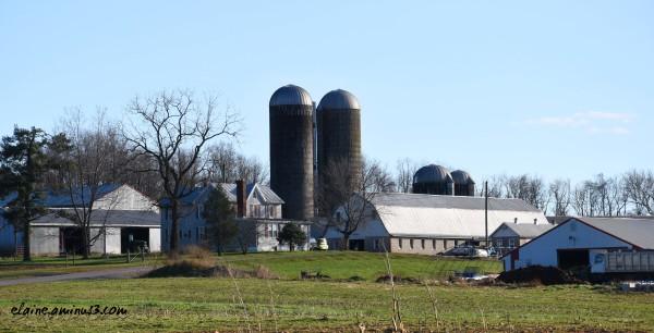 Rocky Point Dairy Farm