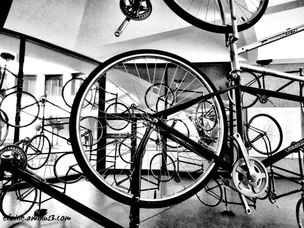 bicycle art display
