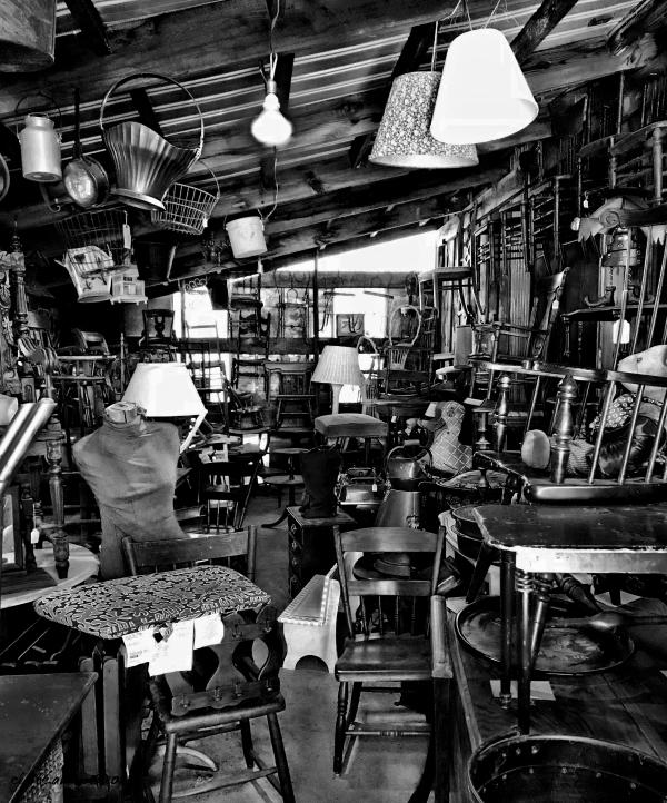 Junk shop