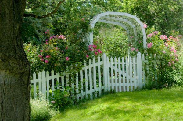 Mississauga Rose Garden