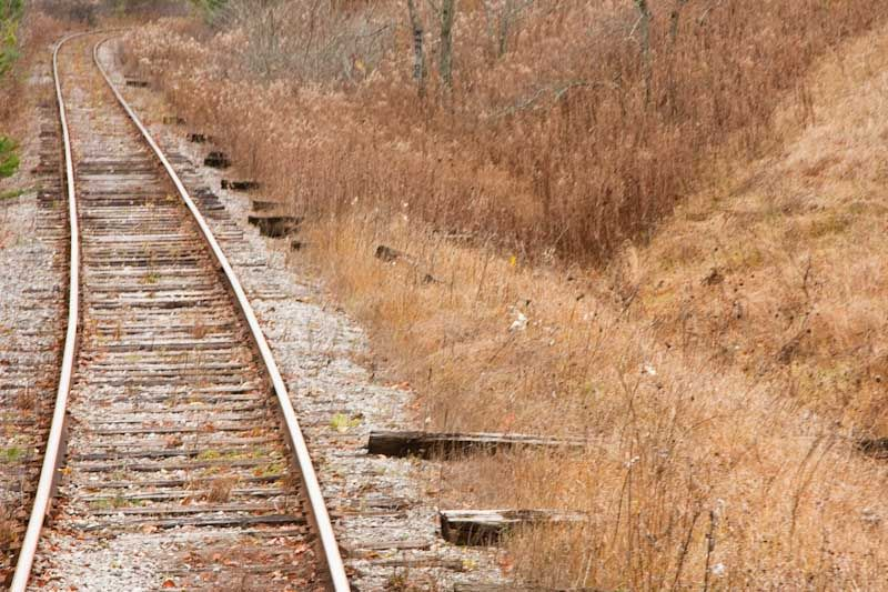 Riding rails autumn train landscape Ontario