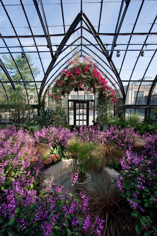 Longwood Gardens, flowers, conservatory