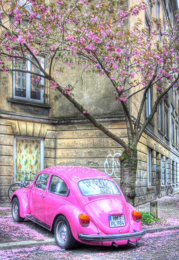 pink volkgswagen beetle
