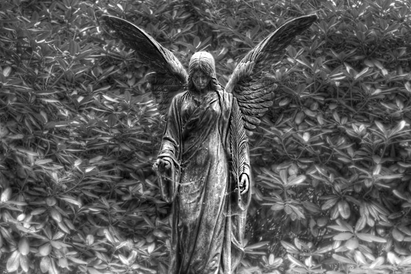 angel ohlsdorf cemetery