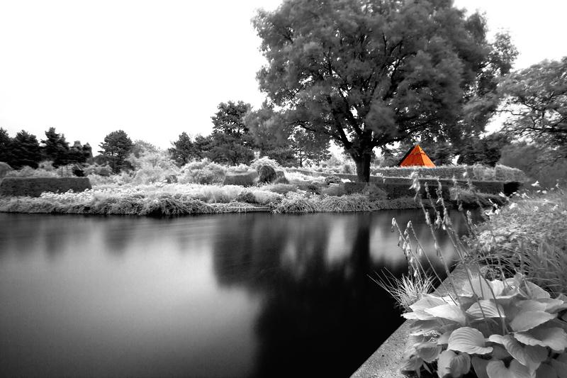 botanic garden hamburg