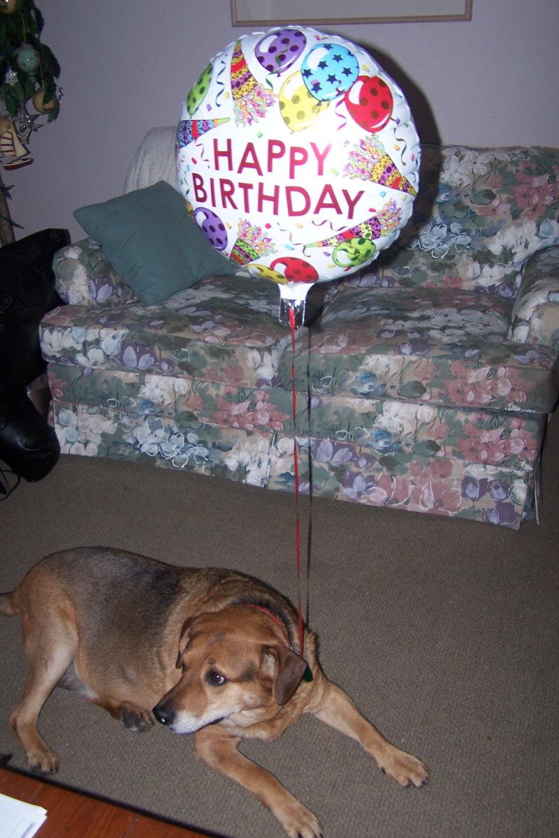 Tux carrying birthday ballon