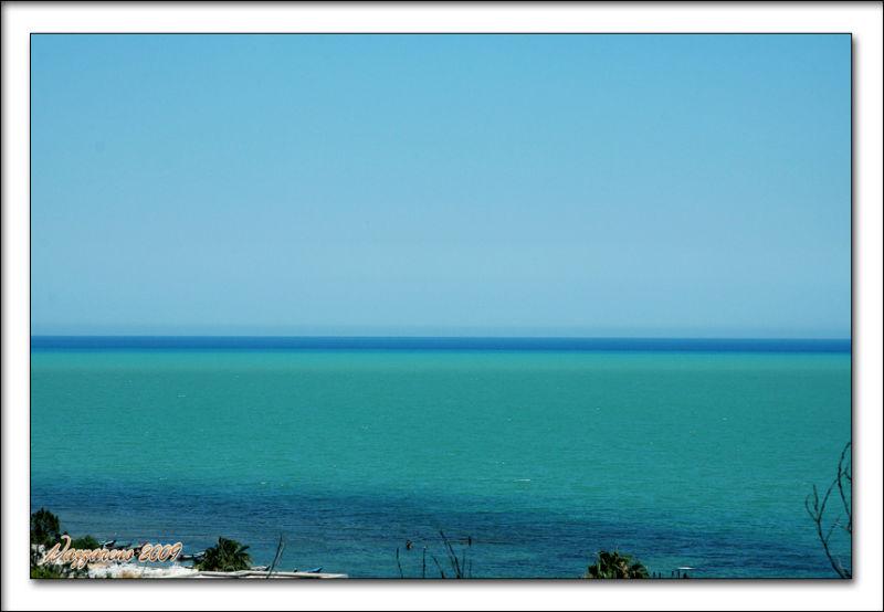 Colors: green & blue