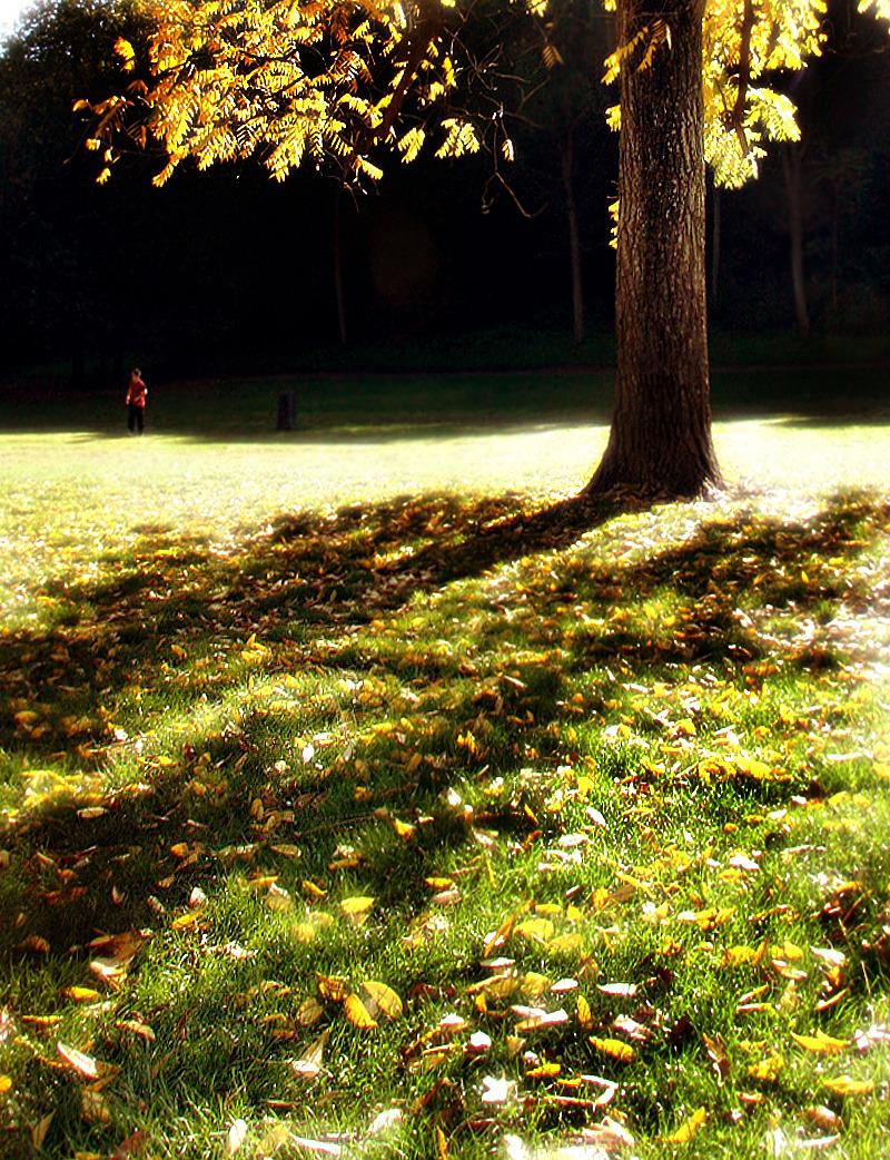 A romantic autumn...