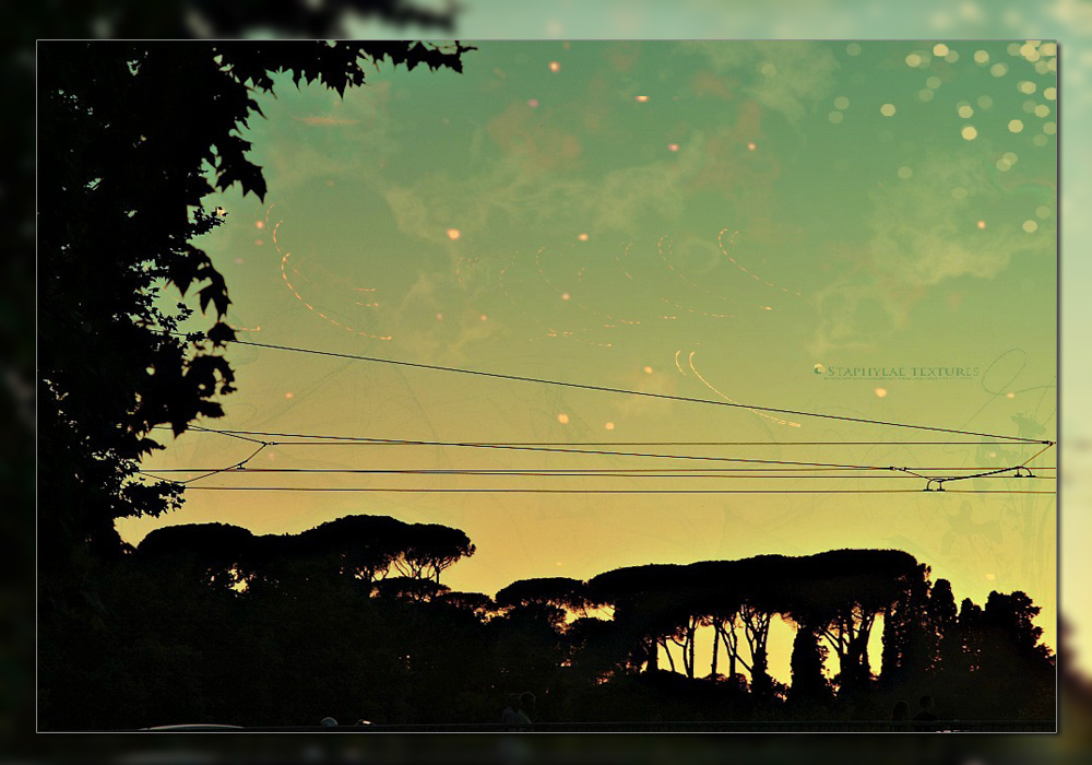 A midsummer night's dream... in Rome 2/2